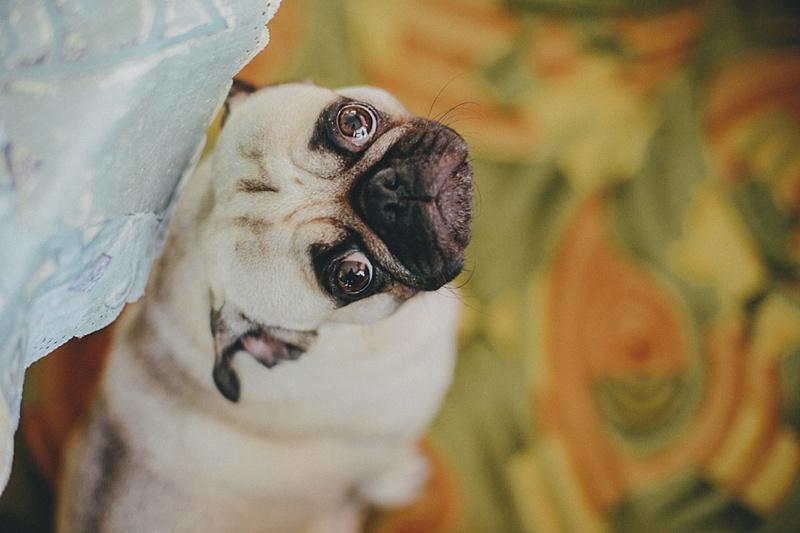 vestuviu fotografas 015